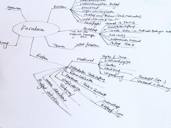 beim Coaching: Mindmap auf Papier zu einzelnen Projektschritten